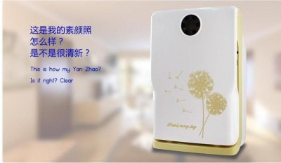 LY 908A air purifier for home use,anion sterilizer 220V