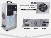 LY 903A ozone sterilizer 3g/h for car,house room,food,air